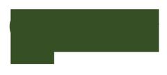 SAF-text-logo